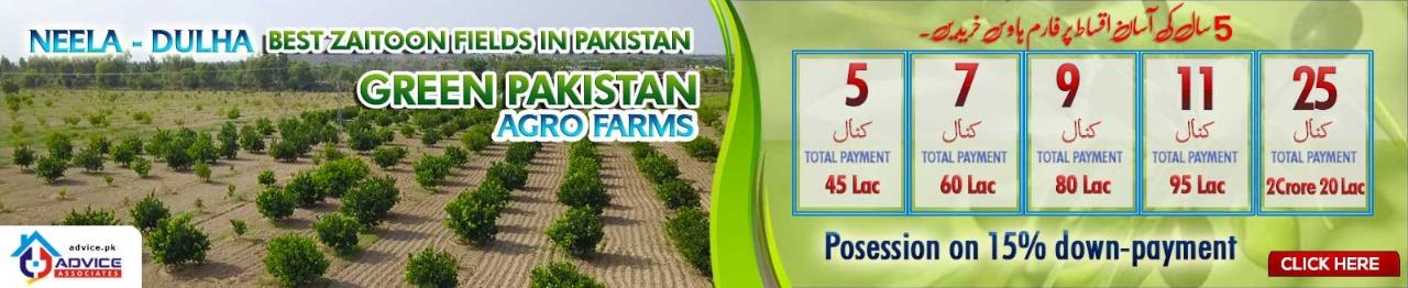 Green_Pakistan__1.jpeg