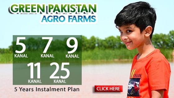 green_pakistan__3.jpeg
