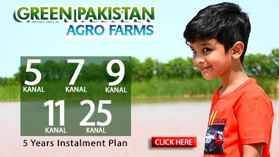 green_pakistan__32.jpeg